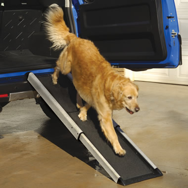 The Small Portable Pet Ramp.