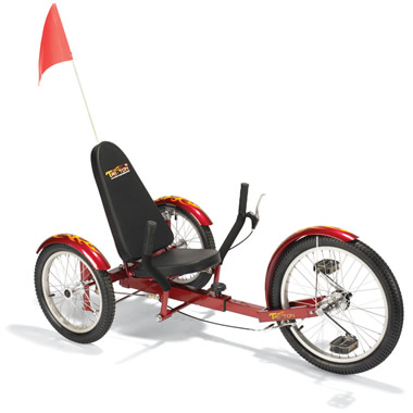 The Three Wheel Recumbent Cruiser.