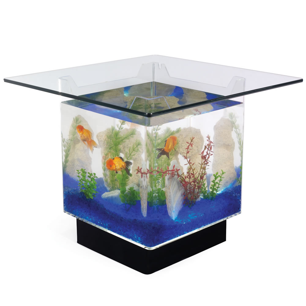 The Aquarium Coffee Table 2