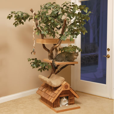 The Feline Tree House