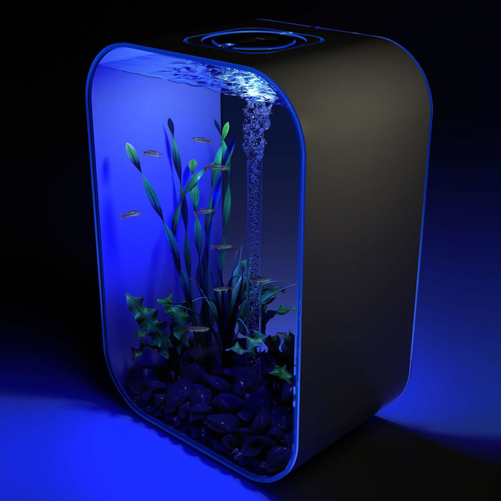 The 24 Hour Light Cycle Aquarium 2