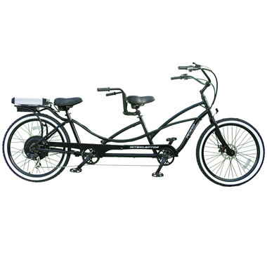 The Only Electric Bicycle Built For Two.