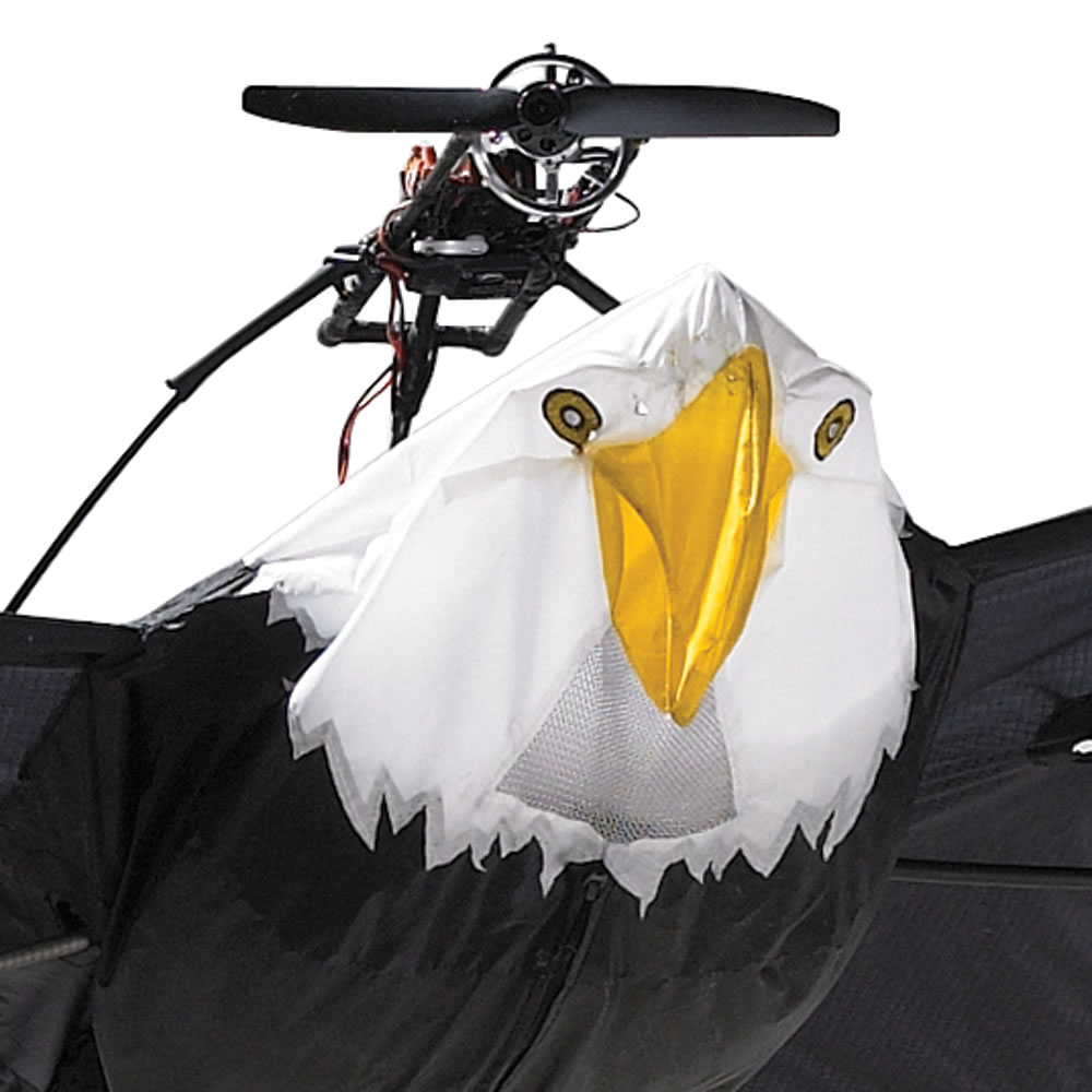 The 9 1/2 Foot Remote Controlled Bald Eagle 2