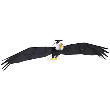 The 9 1/2 Foot Remote Controlled Bald Eagle.