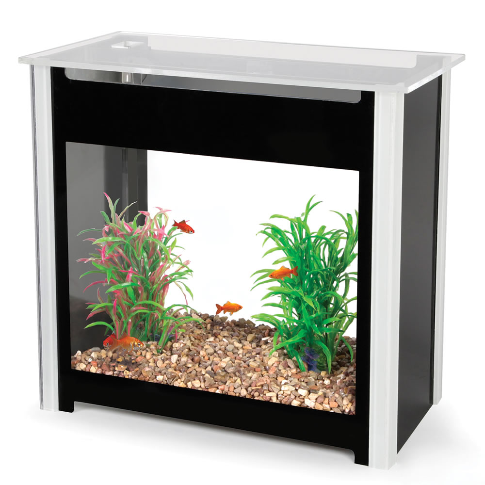 Fish tank maintenance service cost york 2017 fish tank for Fish tank cleaning service