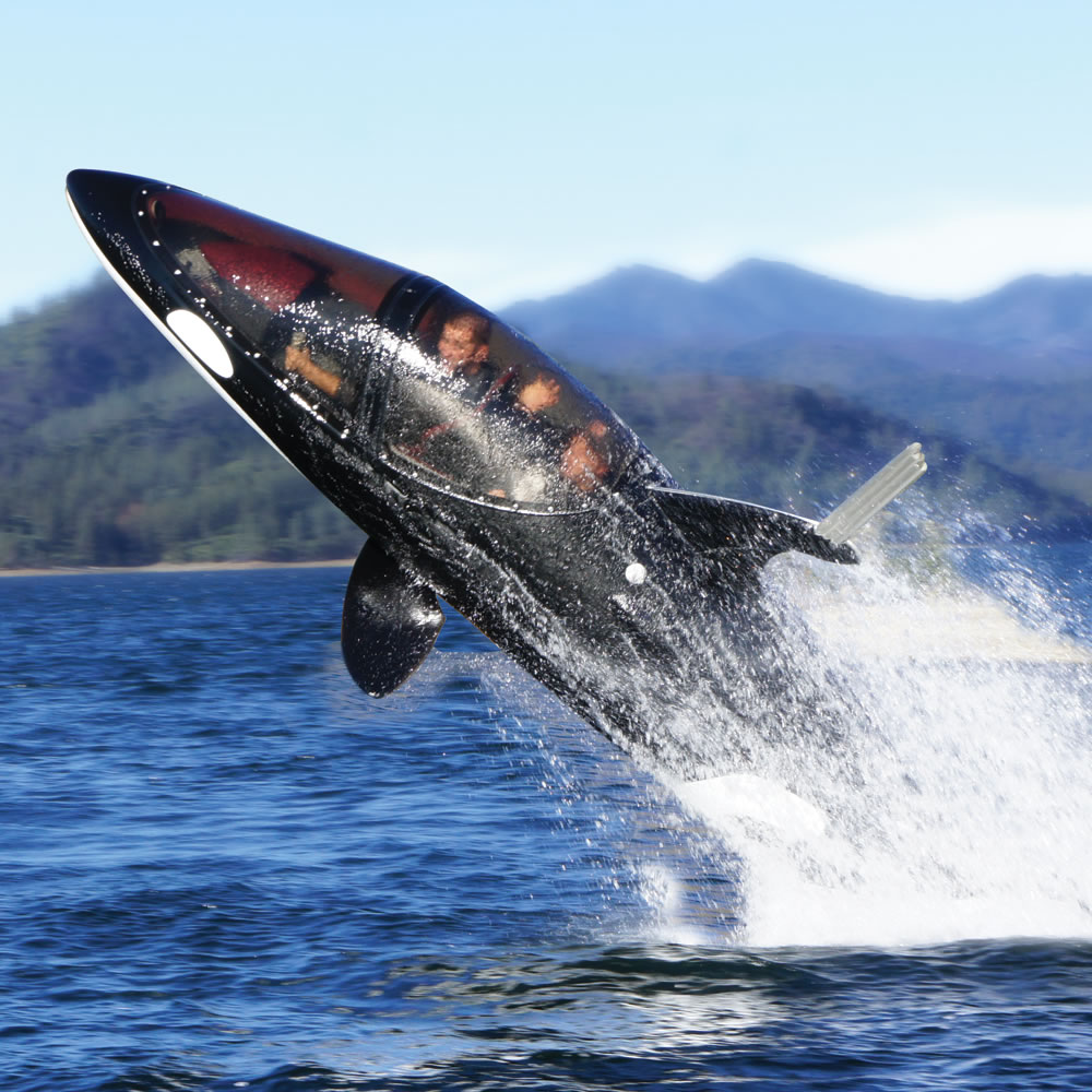 The Killer Whale Submarine 2