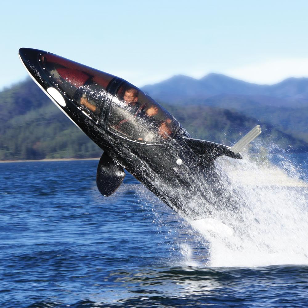 The Killer Whale Submarine 2