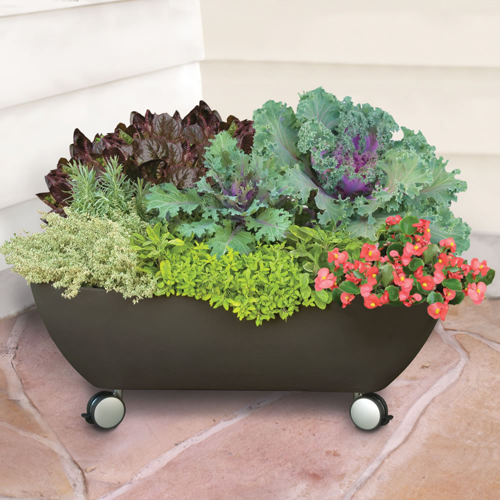 The Mobile Patio Garden 1