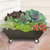 The Mobile Patio Garden.