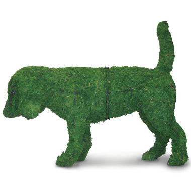 The Canine Garden Topiaries