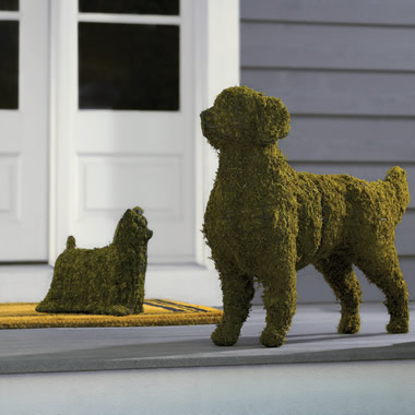 The Canine Garden Topiaries.