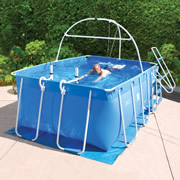 The Swimmer's Treadmill.