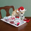 The Canine's Culinary Christmas Cupcakes.