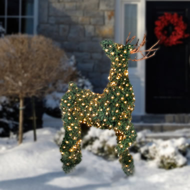 The Illuminated Topiary Reindeer.