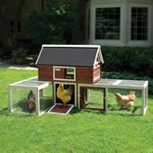The Urban Poultry Palace.