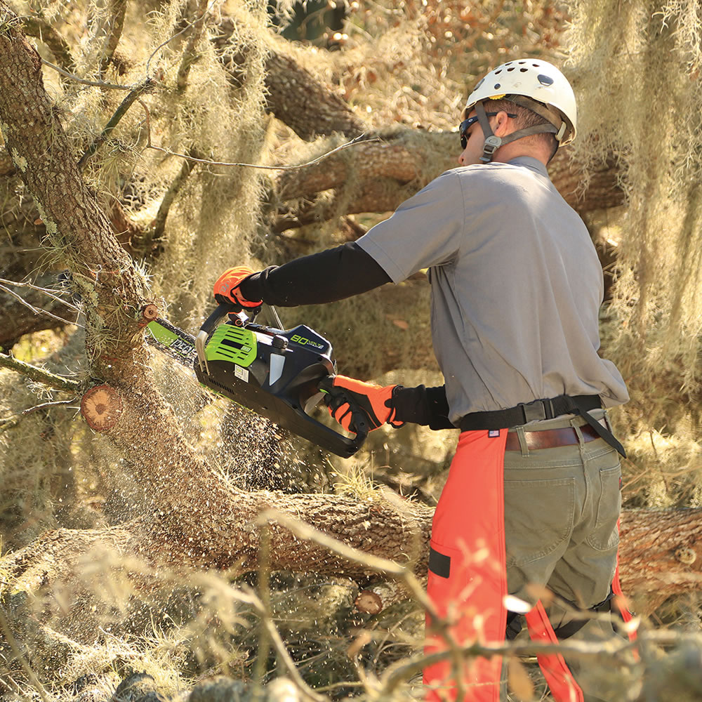 The Superior Rechargeable Chainsaw 4