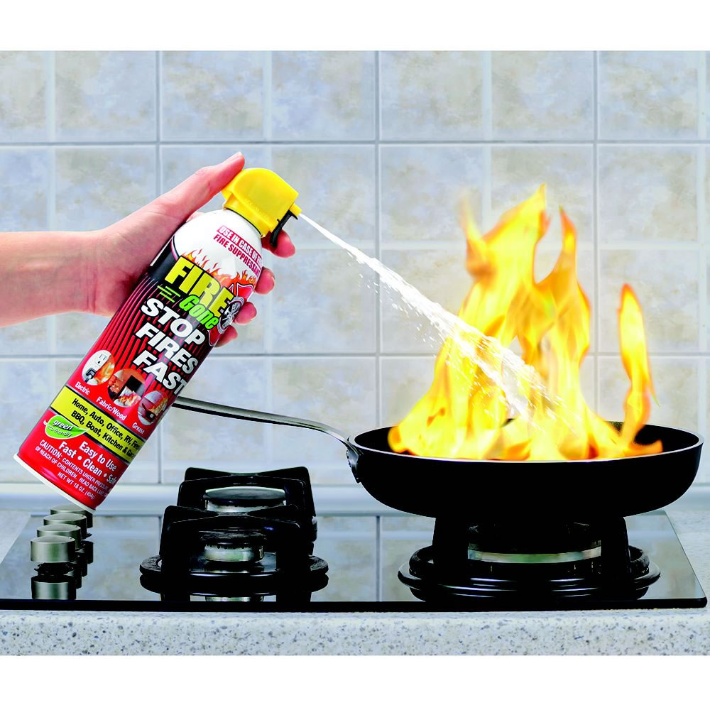 The Compact Fire Extinguisher1