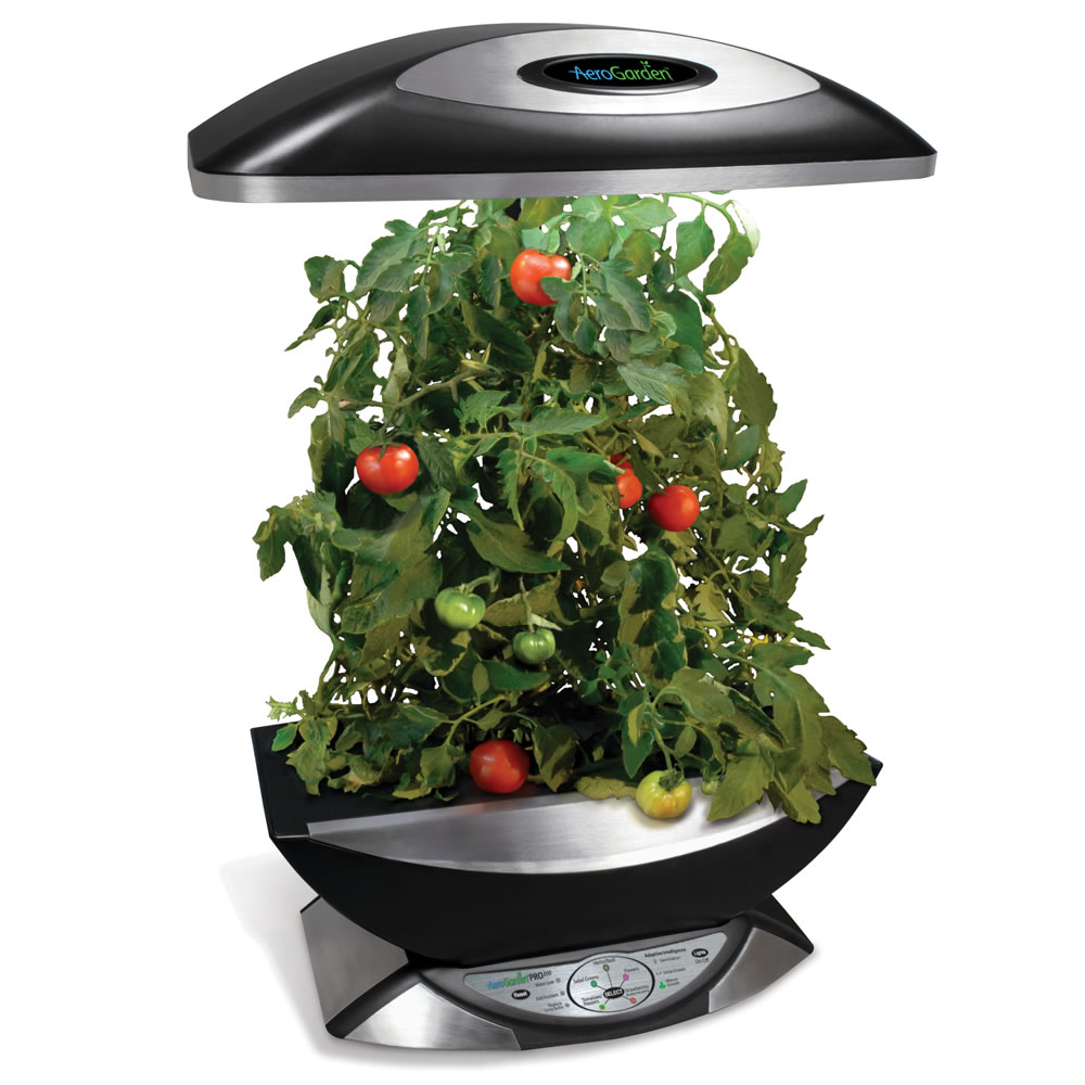 Hydroponic Kitchen Herb Garden Indoor Kitchen Garden Indoor Kitchen Garden Josaelcom Amazoncom