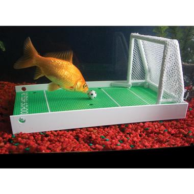 The Fish Agility Training Set.