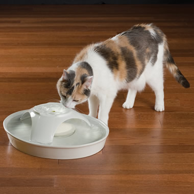 The 72-Ounce Ceramic Pet Fountain.