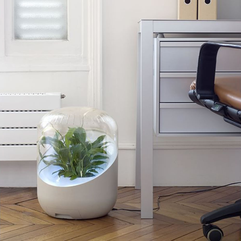 The Only Botanical Air Purifier 3