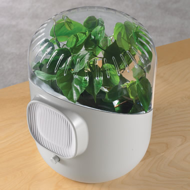 The Only Botanical Air Purifier.