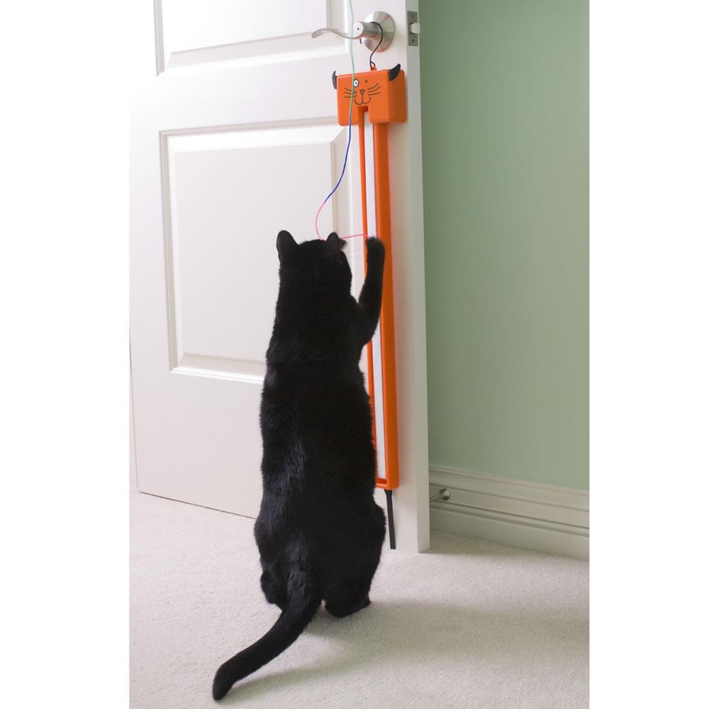 The Feline's String Fling 2