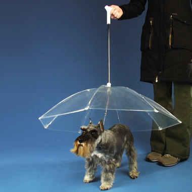 The Dogbrella.