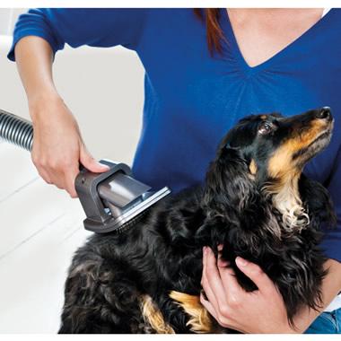 The Dog Hair Vacuum Grooming Brush.