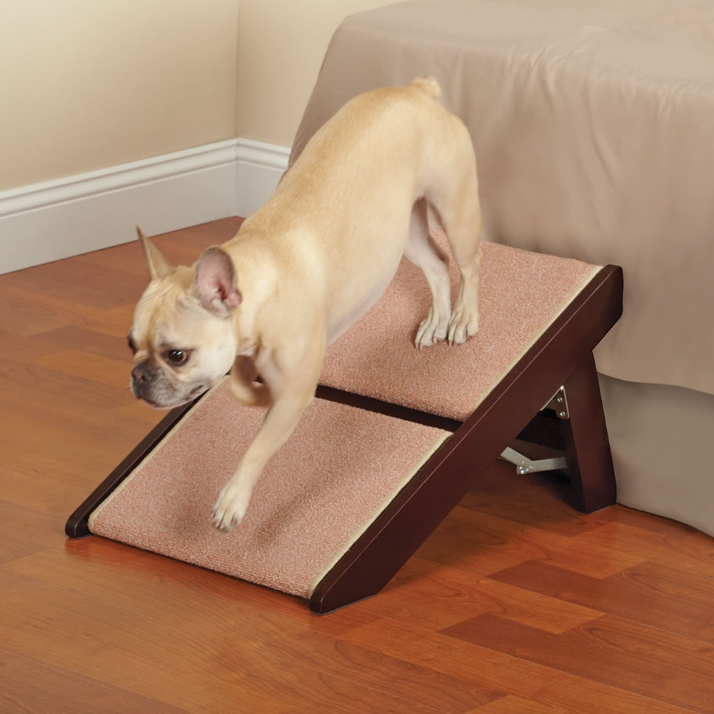 The Fortunate Pet Ramp And Staircase (Two Step)3