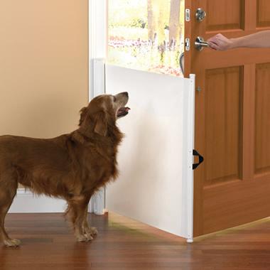 The Dog Escape Preventer.
