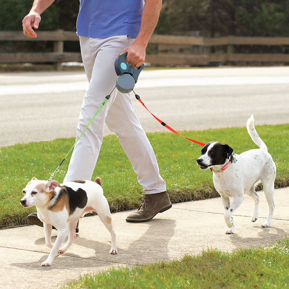 The Tangle Free Dual Dog Leash 2