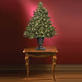 The World's Best Tabletop Prelit Noble Fir (LED).