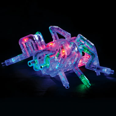 The Illuminated Arthropod Construction Kit.