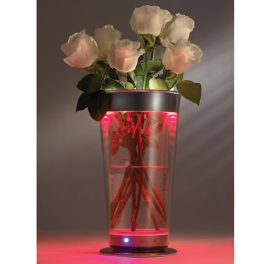 The Color Adjusting Illuminated Vase.