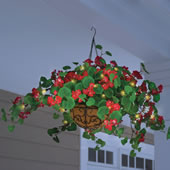 The Cordless Lighted Geranium Basket.