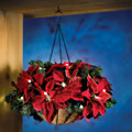 The Cordless Hanging Holiday Poinsettia Basket.