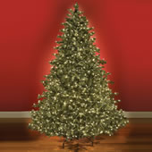 The World's Best Prelit Noble Fir (9.5' Slim LED).