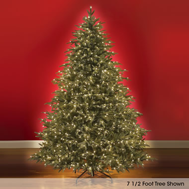 The World's Best Prelit Fraser Fir  (7.5' Slim).