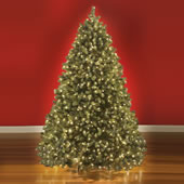 The World's Best Prelit Douglas Fir (LED).