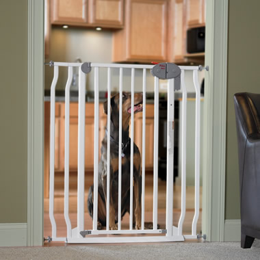 The Great Dane Pet Gate