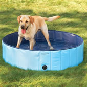 The Canine Splash Pool.