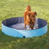 The Canine Splash Pool.