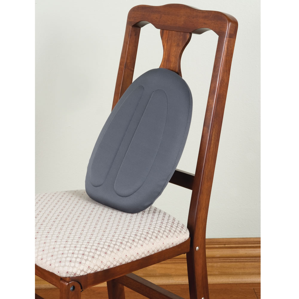 The Totable Back Support Cushion1