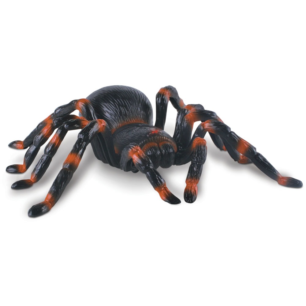 The Remote Controlled Tarantula 1