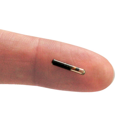 The Theft Recovery Microchips