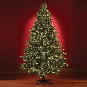 The Five Minute Christmas Tree (6 1/2' Full).
