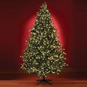 The Five Minute Christmas Tree (7 1/2' Slim).