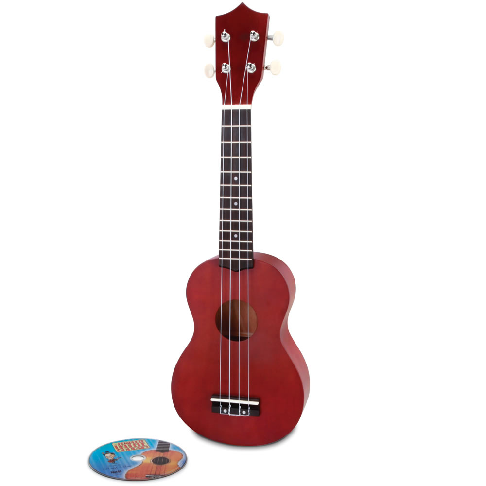 The Learn To Play Ukulele 1