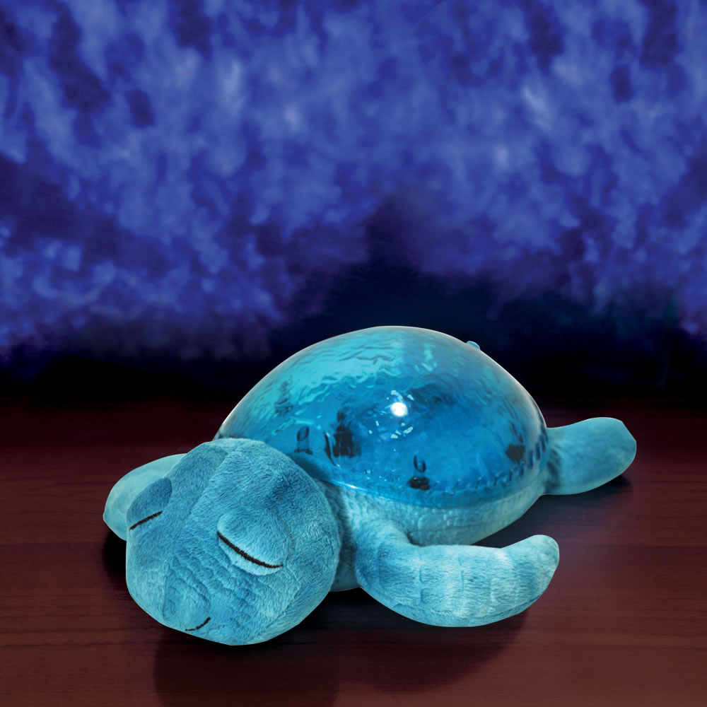The Seascape Projecting Turtle 1
